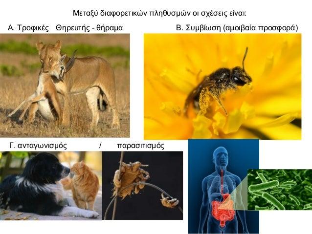 2.1 ισορροπία στα βιολογικά συστήματα