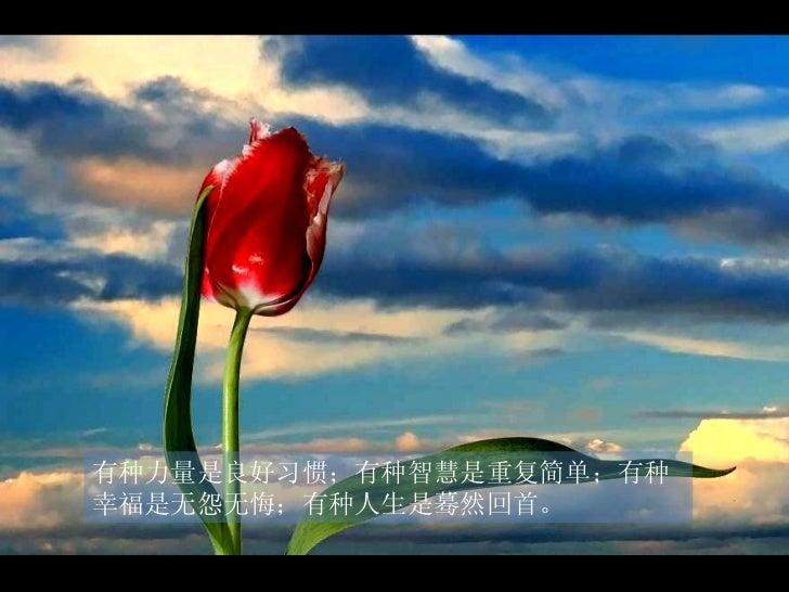 有种力量是良好习惯;有种智慧是重复简单;有种幸福是无怨无悔;有种人生是蓦然回首。