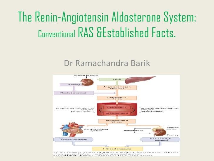 The Renin-Angiotensin Aldosterone System:     Conventional RAS &Established Facts.          Dr Ramachandra Barik