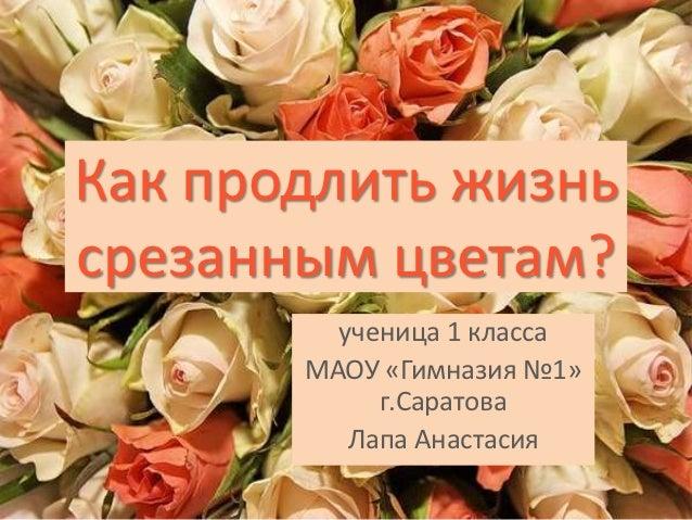 Как продлить жизньсрезанным цветам?         ученица 1 класса       МАОУ «Гимназия №1»            г.Саратова          Лапа ...