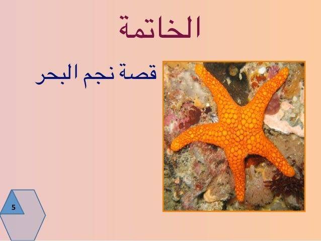 فن الإلقاء المبهر - هاني المنيعي