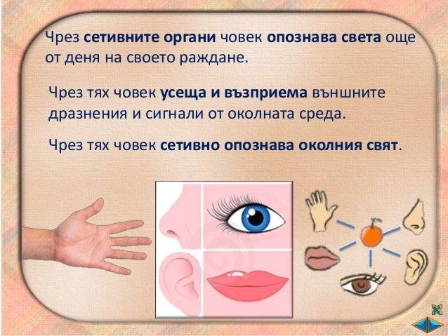 Носът ни помага да…
