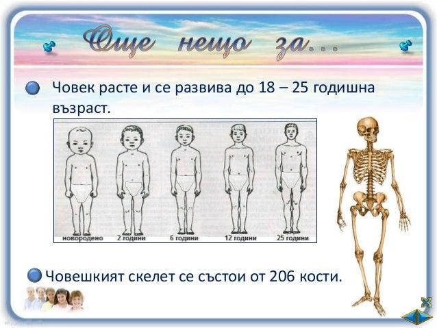 В кой ред СА изброени само частите на тялото?   глава, торс, кожа;               Помисли!   глава, торс, крайници;        ...