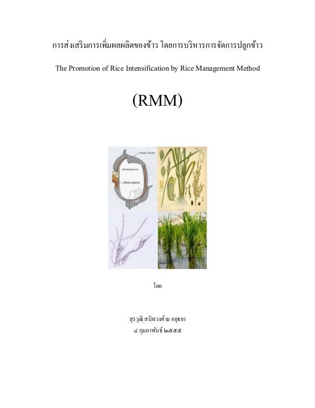 การส่งเสริมการเพิ่มผลผลิตของข้าว โดยการบริหารการจัดการปลูกข้าวThe Promotion of Rice Intensification by Rice Management Met...