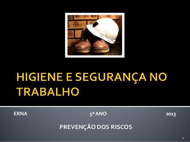 ERNA  5º ANO  2013  PREVENÇÃO DOS RISCOS 1