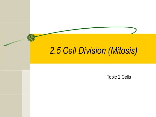 2.5 Cell Division (Mitosis) Topic 2 Cells