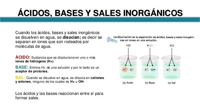Acidosis bases y sales pdf to jpg