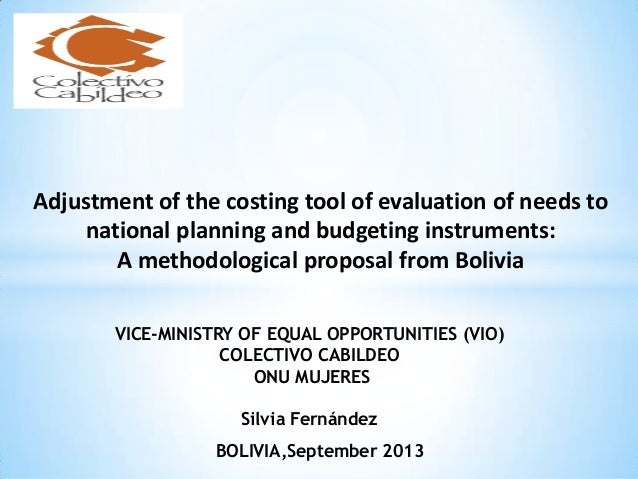 Adjustment of the costing tool of evaluation of needs to national planning and budgeting instruments: A methodological pro...