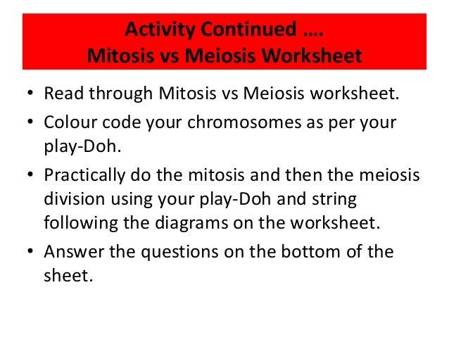 24 dividing to multiply – Mitosis Versus Meiosis Worksheet