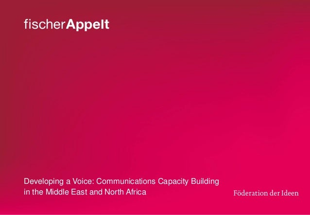 Developing a Voice: Communications Capacity Building in the Middle East and North Africa