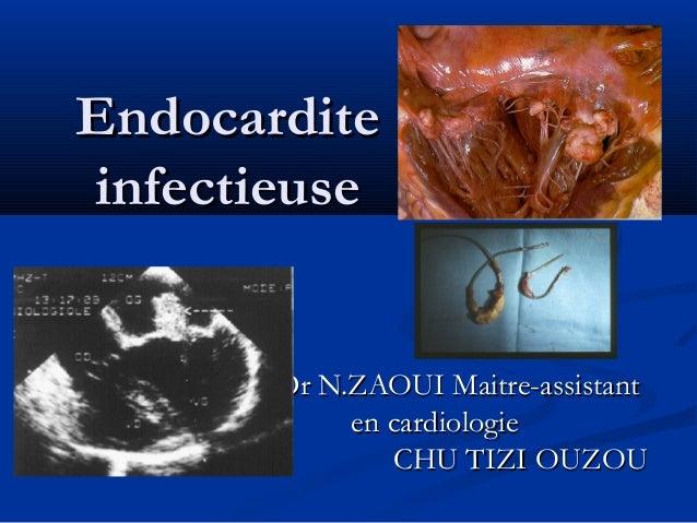 Endocardite infectieuse  Dr N.ZAOUI Maitre-assistant en cardiologie CHU TIZI OUZOU