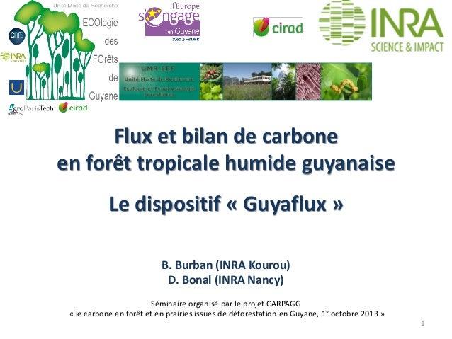 Flux et bilan de carbone en forêt tropicale humide guyanaise Le dispositif « Guyaflux » B. Burban (INRA Kourou) D. Bonal (...