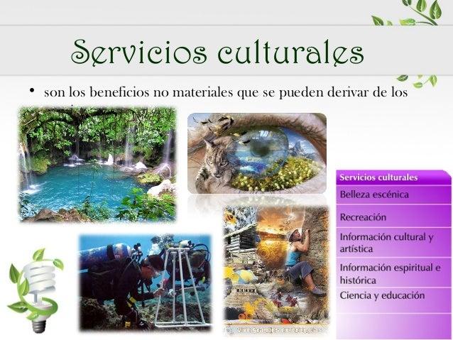 2.6 Servicios ambientales