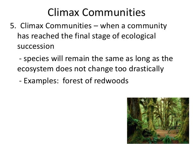essay about climax community Ecological succession  what is the climax stage of an ecological succession the climax stage is the stage of the ecological succession in which the community.