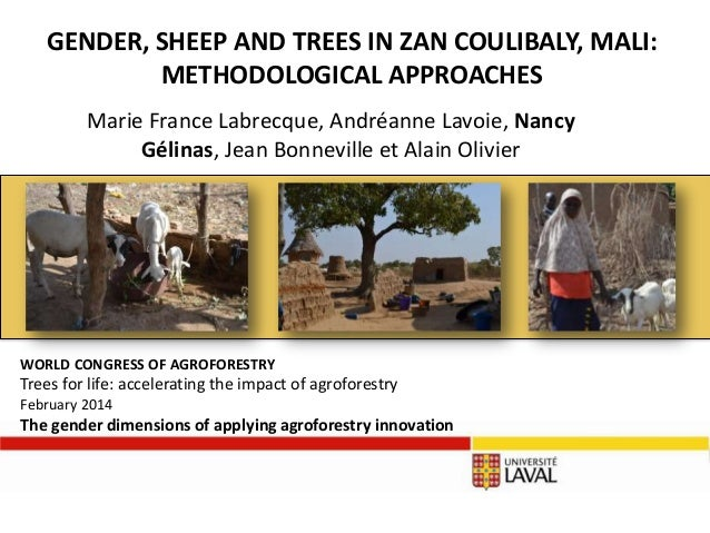 GENDER, SHEEP AND TREES IN ZAN COULIBALY, MALI: METHODOLOGICAL APPROACHES Marie France Labrecque, Andréanne Lavoie, Nancy ...