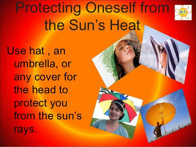 2 Effects Of The Sun S Heat And Light
