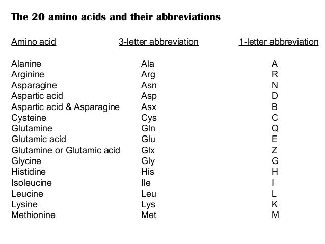 Amino acids and metabolism 9 the 20 amino acids and their abbreviations amino acid 3 letter thecheapjerseys Images