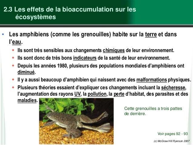 (c) McGraw Hill Ryerson 2007 2.3 Les effets de la bioaccumulation sur les écosystèmes • Les amphibiens (comme les grenouil...