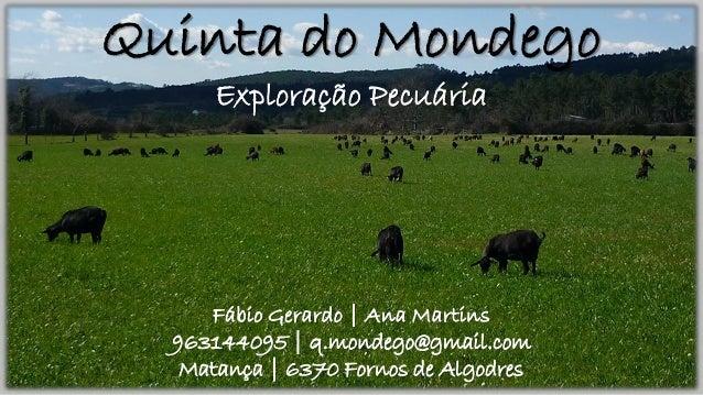 Quinta do Mondego Exploração Pecuária Fábio Gerardo | Ana Martins 963144095 | q.mondego@gmail.com Matança | 6370 Fornos de...