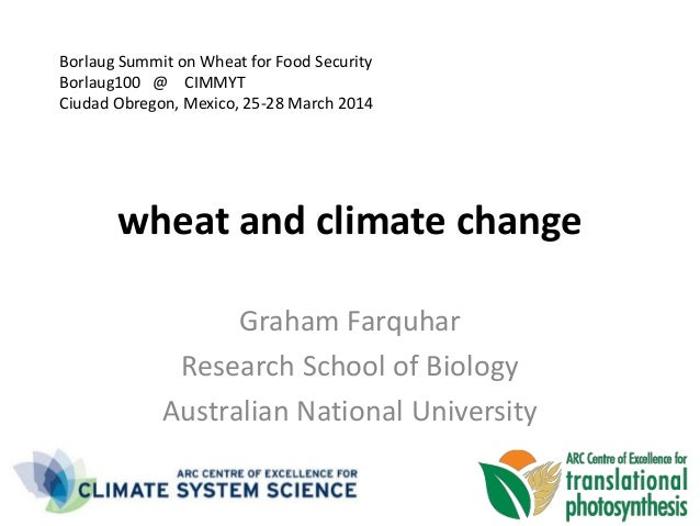 wheat and climate change Graham Farquhar Research School of Biology Australian National University Borlaug Summit on Wheat...