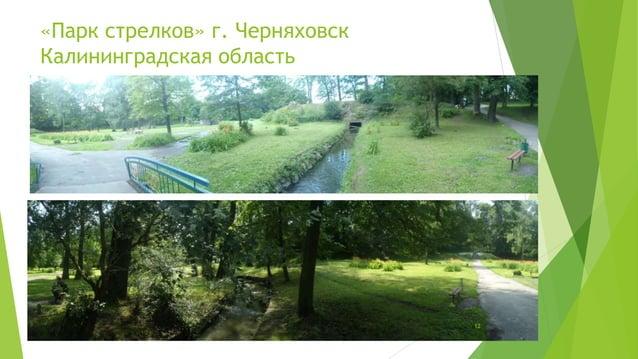 «Парк стрелков» г. Черняховск  Калининградская область  12