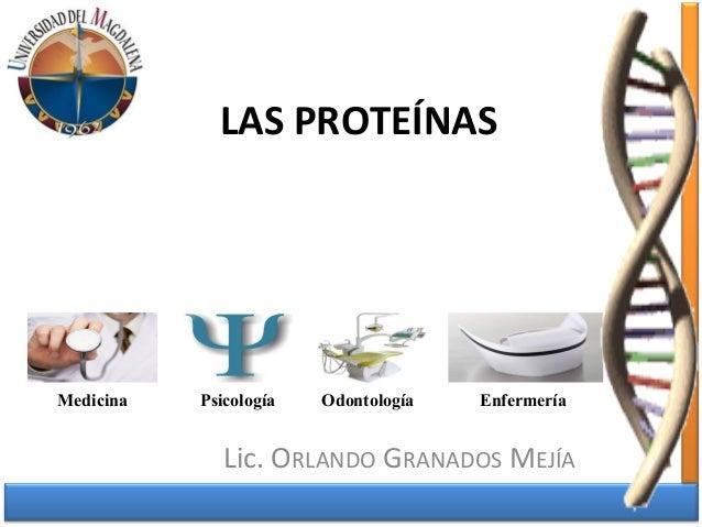 LAS PROTEÍNAS  Medicina Psicología Odontología Enfermería  Lic. ORLANDO GRANADOS MEJÍA