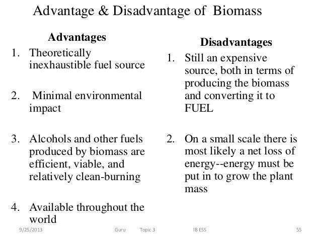 10 Biomass Advantages And Disadvantages