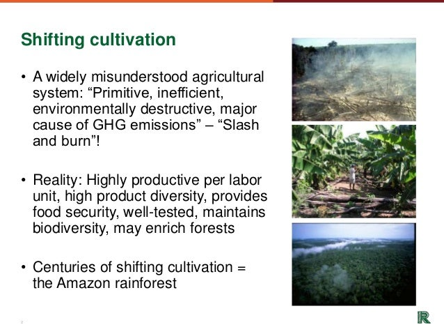 Food Safety Microbiology Sanitation And Haccp Presentation together with Strategic Risk Management 10280925 together with Phylum Arthropods further Electronic  puter Repair Services moreover Coral Reef. on food cycle definition