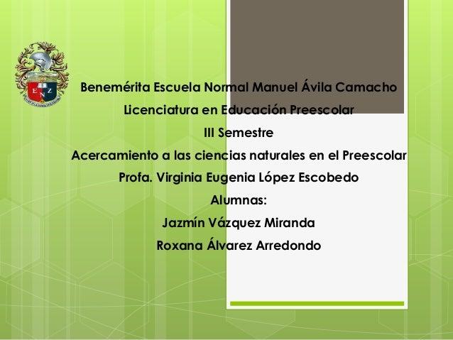 Benemérita Escuela Normal Manuel Ávila Camacho Licenciatura en Educación Preescolar III Semestre Acercamiento a las cienci...