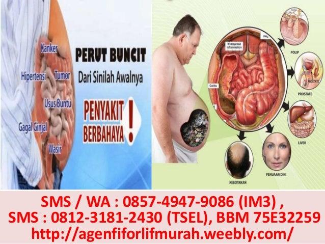 Agen Fiforlif Jakarta Barat, 0812-3181-2430 (TSel), Beli Fiforlif Jakarta Barat, Jual Fiforlif Jakarta Barat Slide 3