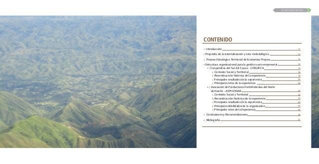 PROCESO ESTRATEGICO TERRITORIAL ECONOMIAS PROPIAS - SUYUSAMA - SI SE PUEDE Slide 3