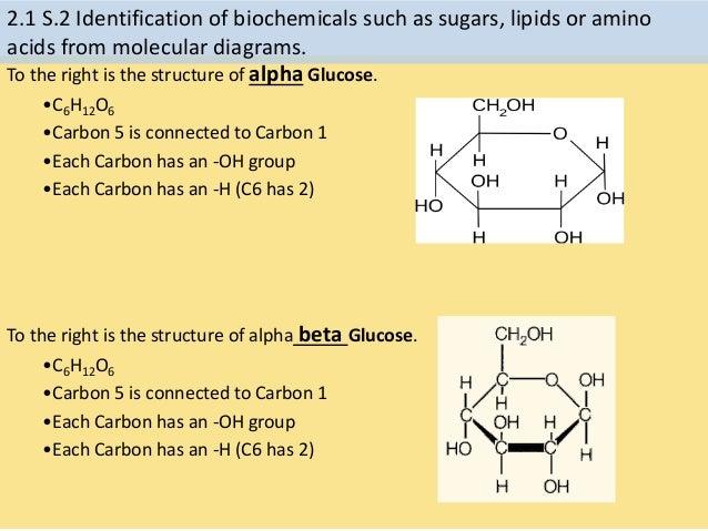 catabolic steroids prednisone