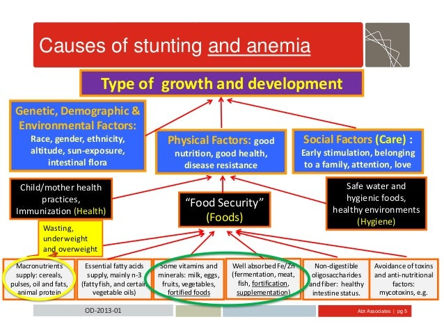 Abt Associates | pg 5OD-2013-01 Causes of stunting and anemia Type of growth and development Physical Factors: good nutrit...
