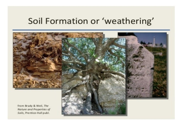 Formation by allah dad khan for Soil forming minerals