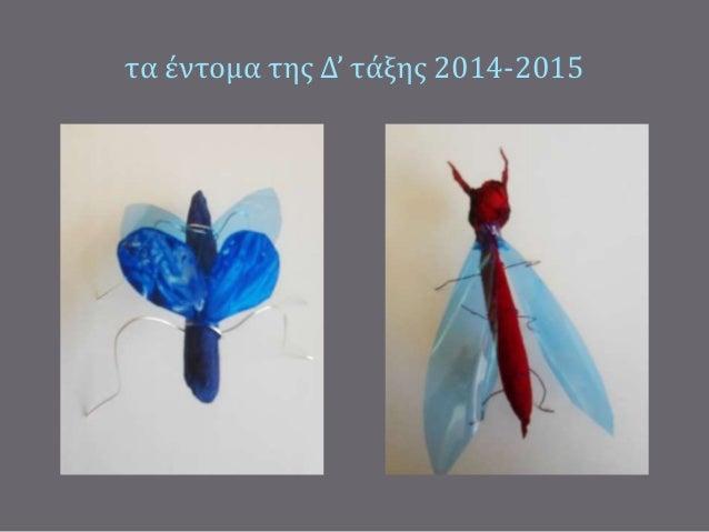 τα έντομα της Δ' τάξης 2014-2015