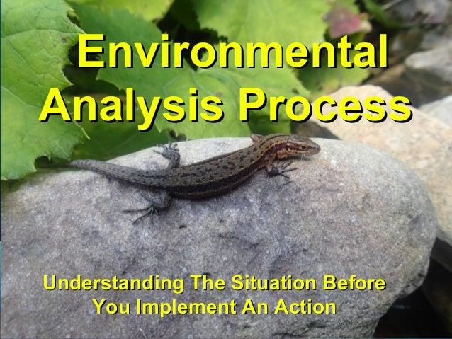 EnvironmentalEnvironmental AnalysisAnalysis ProcessProcess Understanding The Situation BeforeUnderstanding The Situation B...