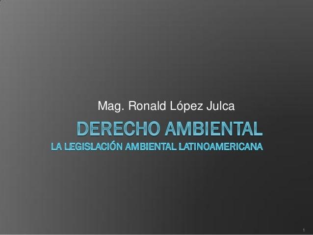 Mag. Ronald López Julca 1