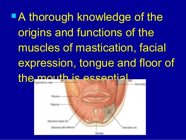Oral anatomy for Floor of mouth anatomy