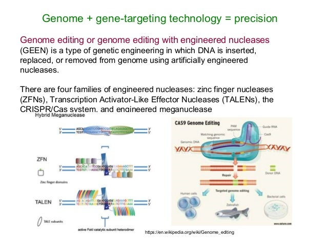 Genome editing with engineered zinc finger nucleases pdf to jpg