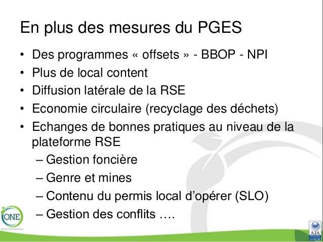 plan de gestion environnementale et sociale pges pdf