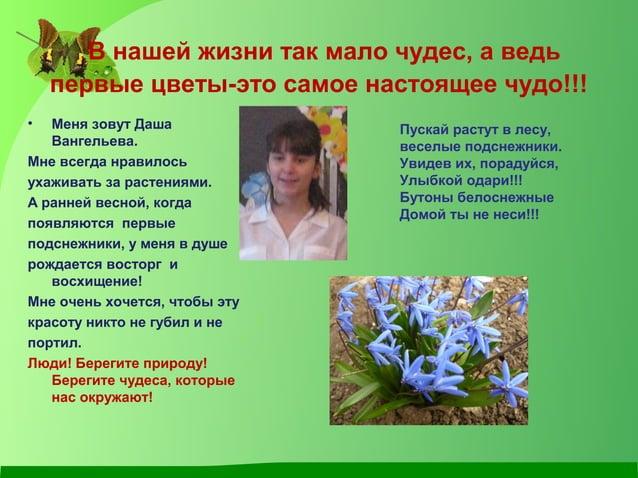 В нашей жизни так мало чудес, а ведь первые цветы-это самое настоящее чудо!!! • Меня зовут Даша Вангельева. Мне всегда нра...