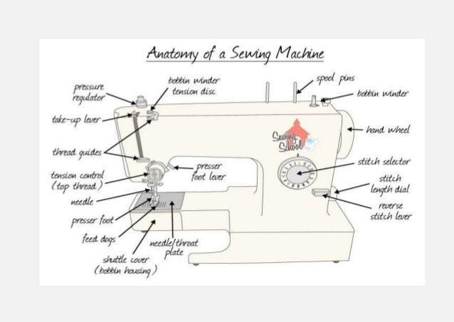 Anatomy Classification Of Basic Sewing Machine