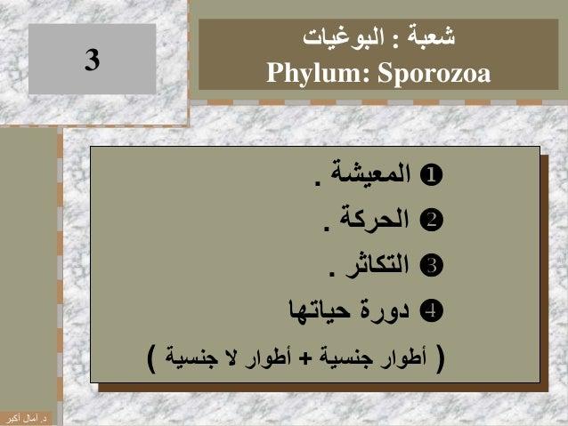 شعبة:البوغيات Phylum: Sporozoa3 المعيشة. الحركة. التكاثر. دورةحياتها (أطوارجنسية+أطوارالجن...