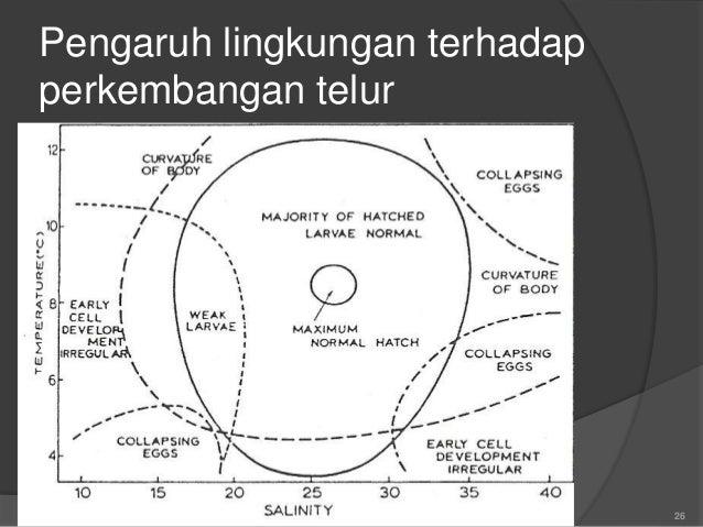 Pengaruh lingkungan terhadap penetasan telur ikan laut  Suhu (suhu rendah: lambat menetas)  Salinitas (salibnitas rendah...