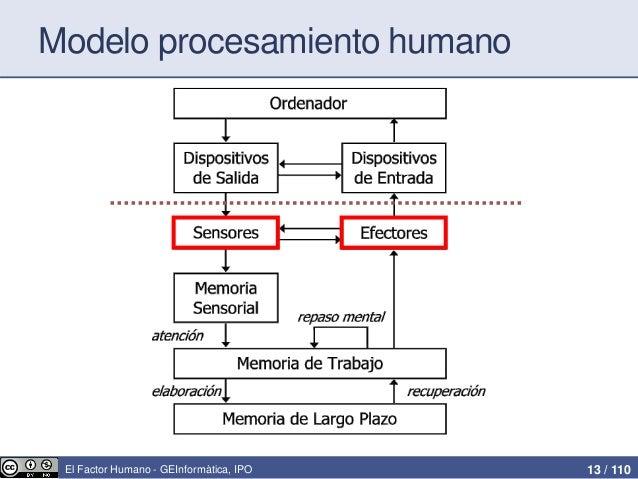 Factor humano en ipo
