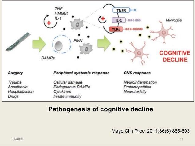 03/08/16 13 Mayo Clin Proc. 2011;86(6):885-893 Pathogenesis of cognitive decline