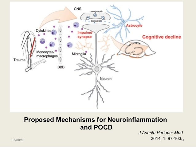 Proposed Mechanisms for Neuroinflammation and POCD J Anesth Perioper Med 2014; 1: 97-103.03/08/16 14