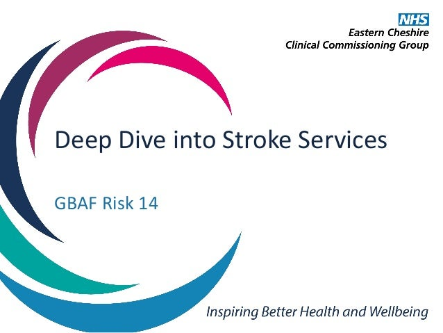 Deep Dive into Stroke Services GBAF Risk 14