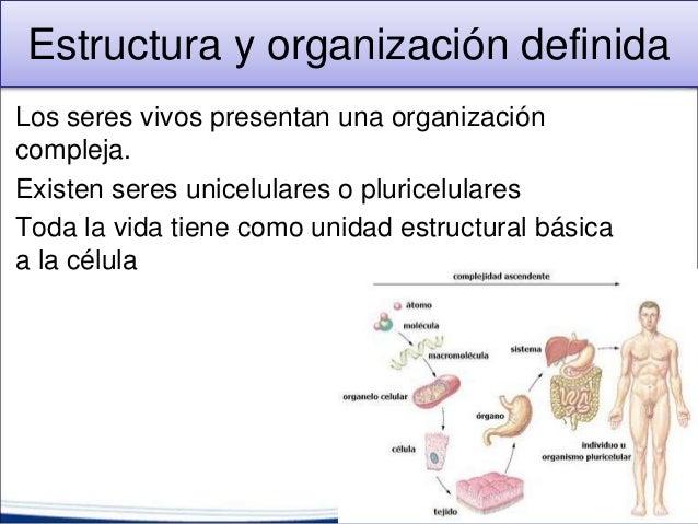 1 2 caracteristicas de los seres vivos - Estructuras libros vivos ...