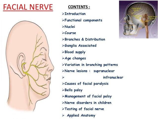 Facial nerve anatomical consideration and disease associated